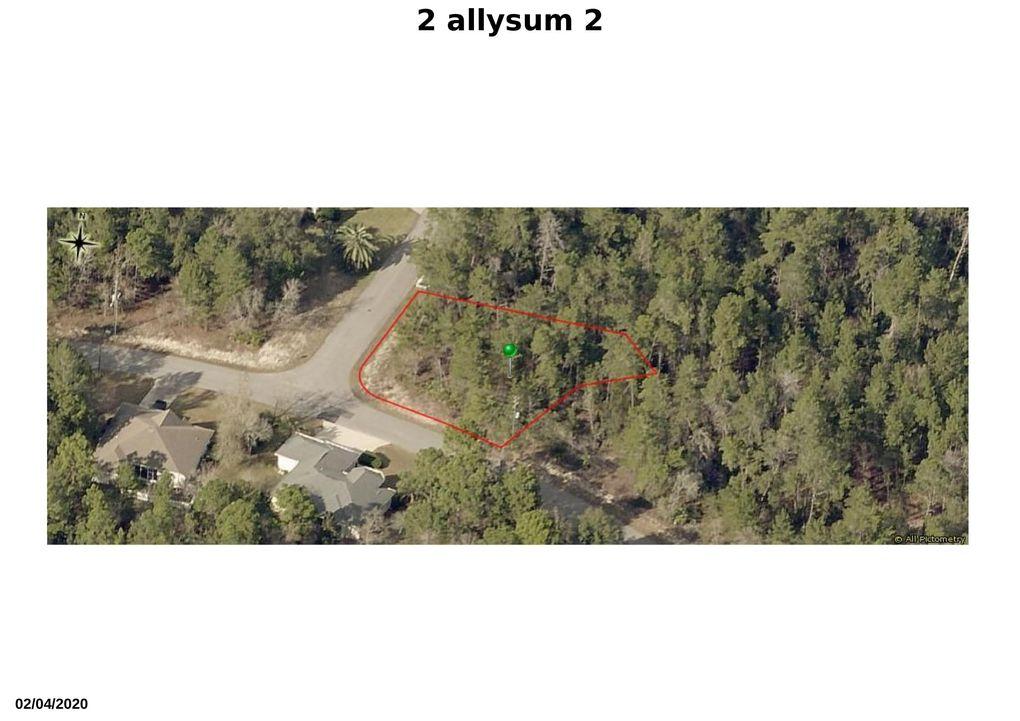2 Alyssum Ct Homosassa, FL 34446