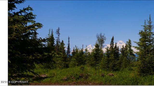 C14 Alaskan Wildwood Rnch, Anchor Point, AK 99556