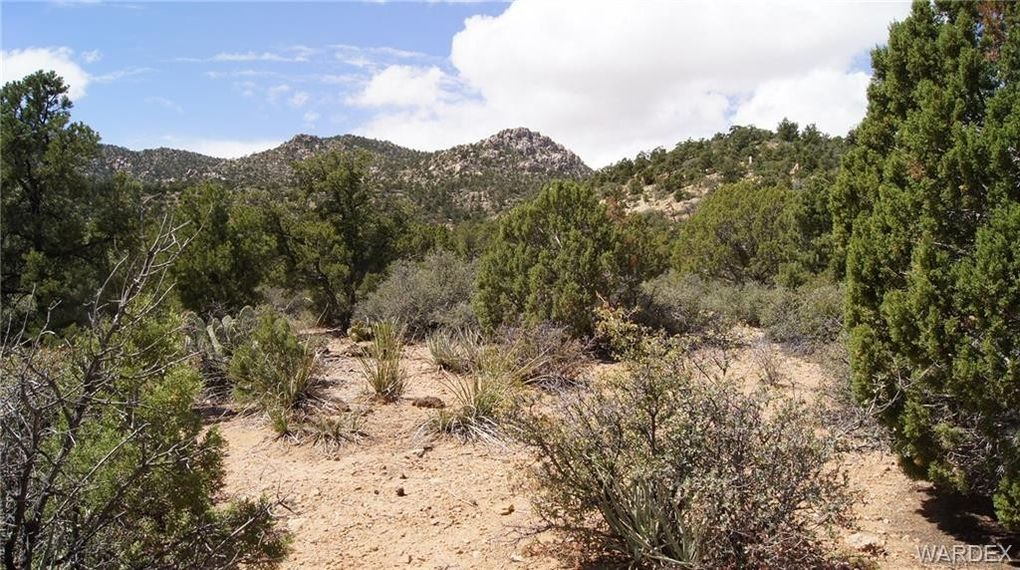 6731 N Trap Springs Rd, Hackberry, AZ 86411