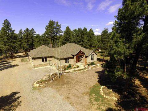 Photo of 488 Wieland Dr, Bayfield, CO 81122