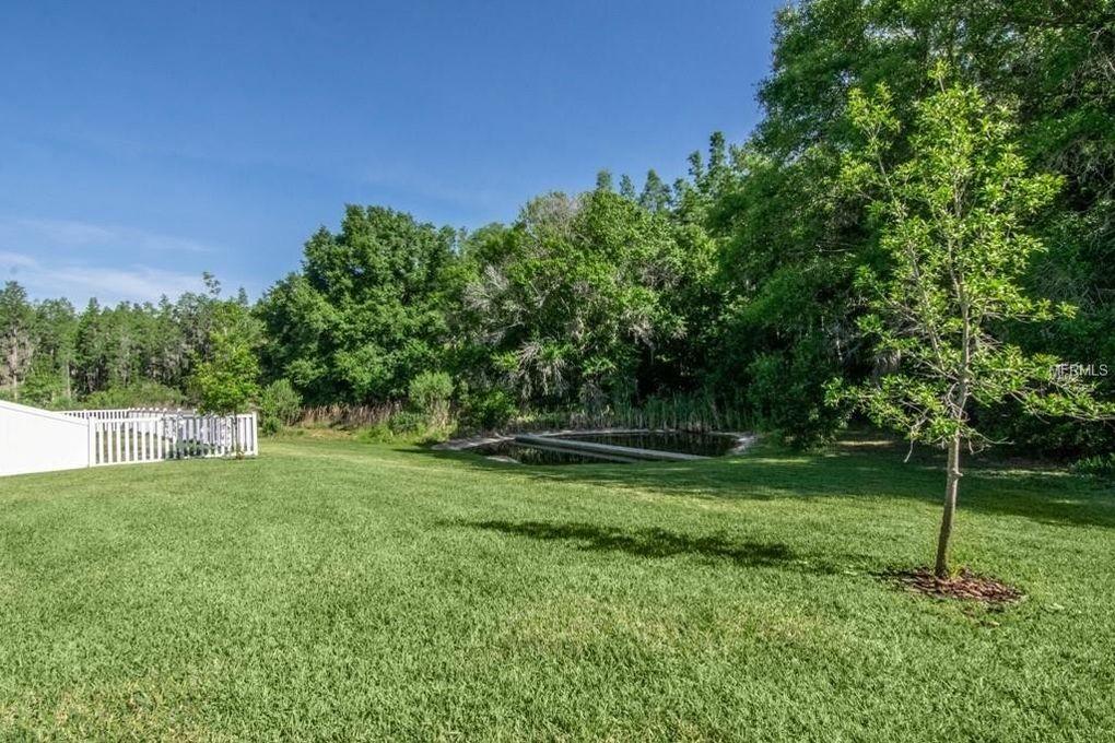 12295 Crestridge Loop, New Port Richey, FL 34655