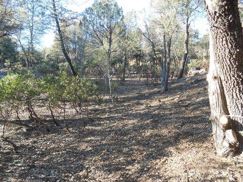 2006 E Yellowbell Ln, Payson, AZ 85541