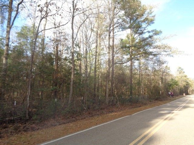 865 Harry Sones Rd, Carriere, MS 39426