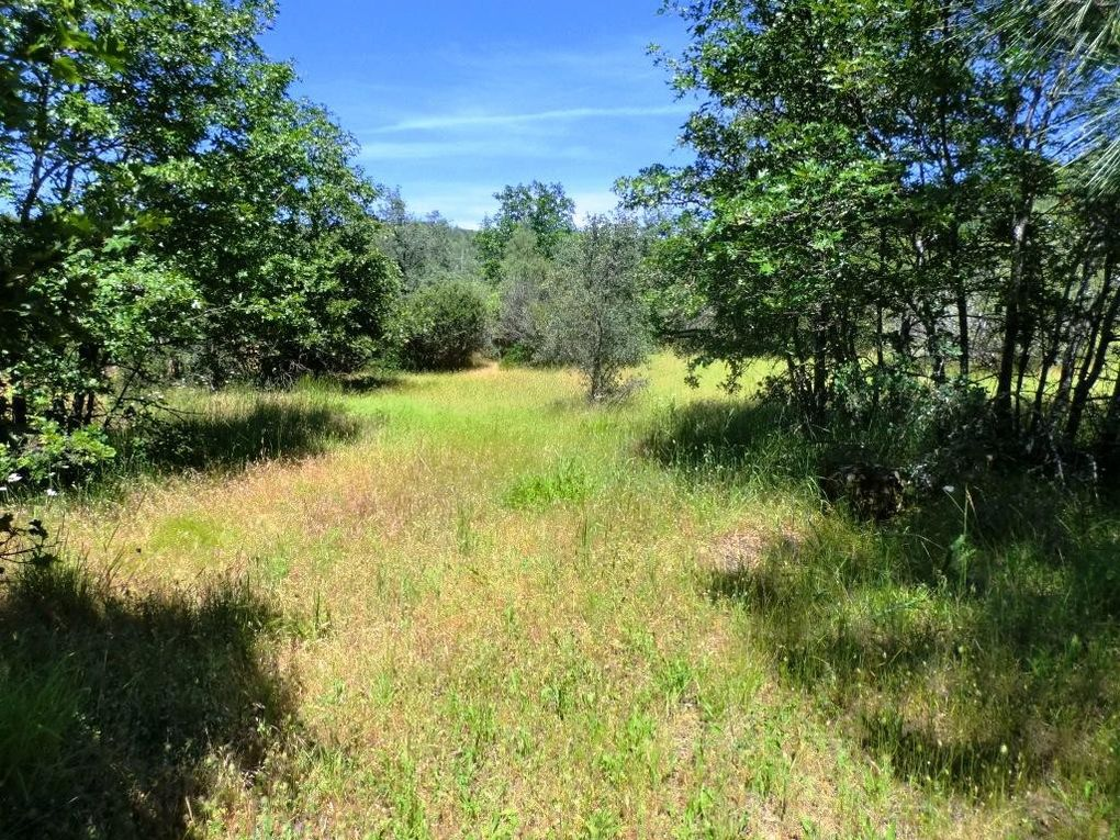 10 Acres Patterson Ranch Rd Round Mountain, CA 96084