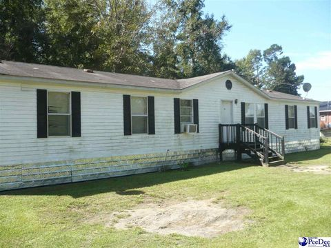 Photo of 20 Easter Ln, Cades, SC 29518