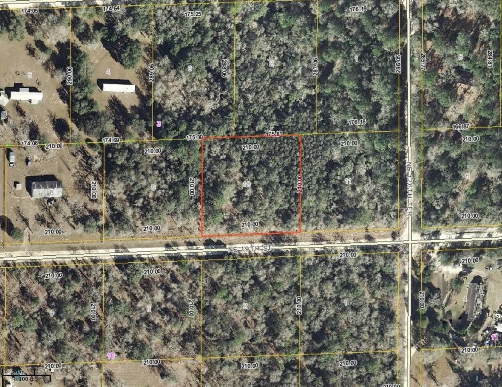 Ne 19th St Williston FL 32696 Land For Sale and Real Estate