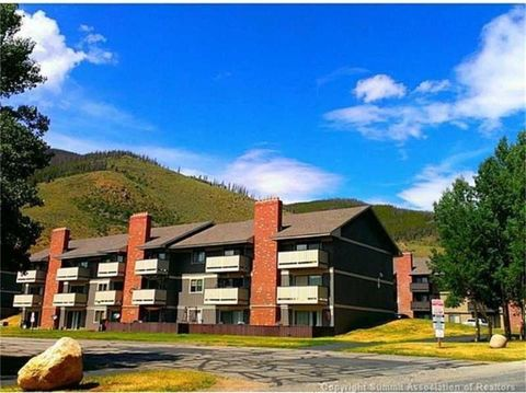 Photo of 1003 Straight Creek Dr, CO 80435