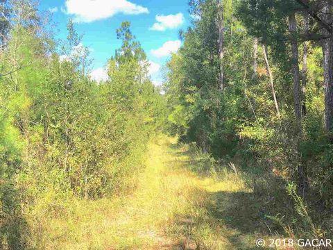 Photo of Ne 152 St, Waldo, FL 32694