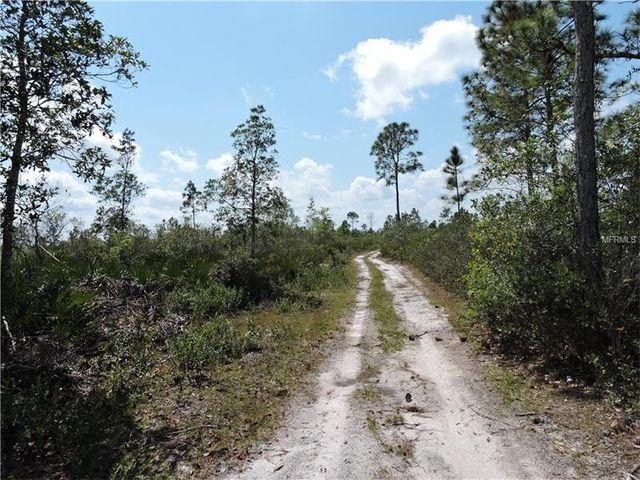 1349 greenbriar dr christmas fl 32709 land for sale