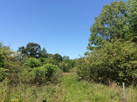 Photo of 82 Acres /-county Road 27, Woodland, AL 36280