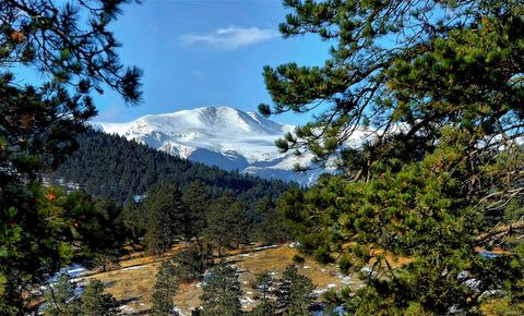 33560 Mount Wilson Peak Trl, Pine, CO 80470