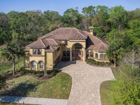 Saint Augustine FL Homes With Special Features