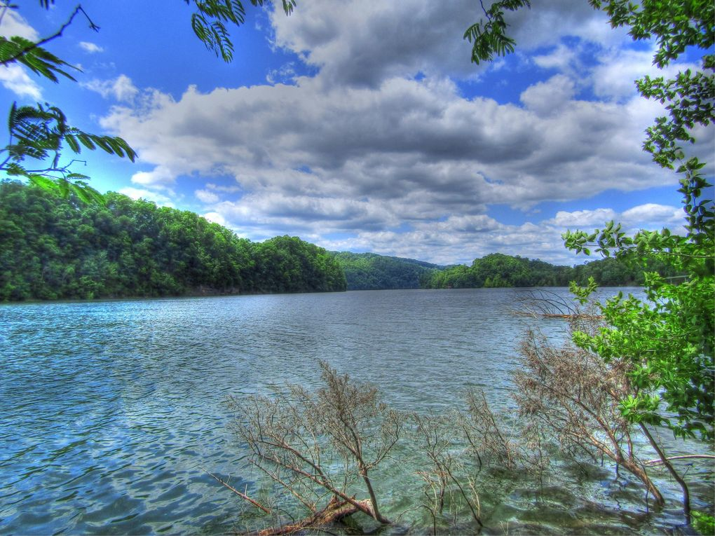 Mountain Shores Rd Lot 53 New Tazewell, TN 37825