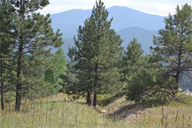 306 park rd bailey co 80421 land for sale and real