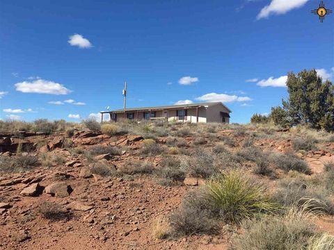 919 Old Cabin Pl, Fort Sumner, NM 88119