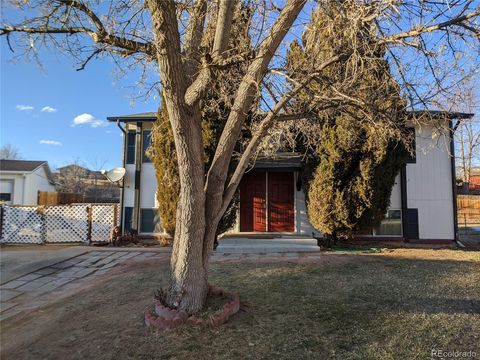 Photo of 6182 Devils Head Ct, Golden, CO 80403
