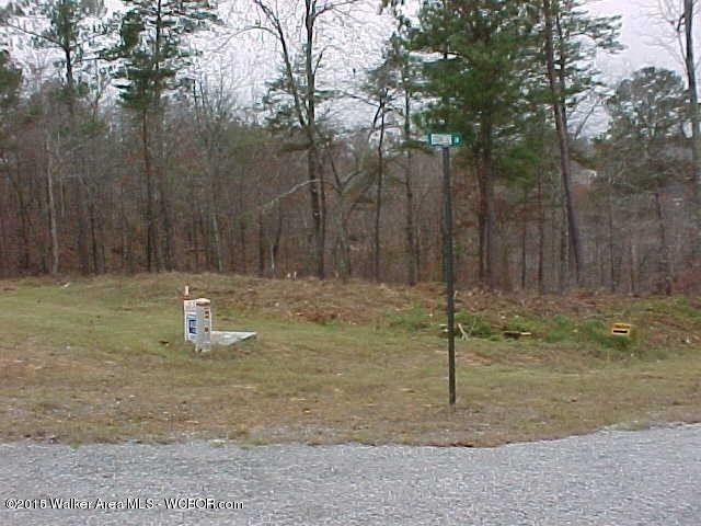 Brushy Main Crk Lot 8, Arley, AL 35541