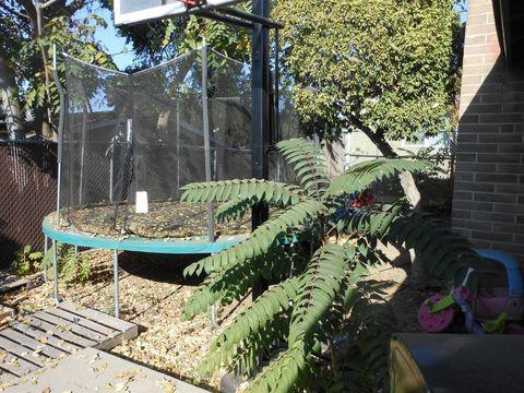 Nunes Farm Modesto Ca Recently Sold Homes Realtor Com