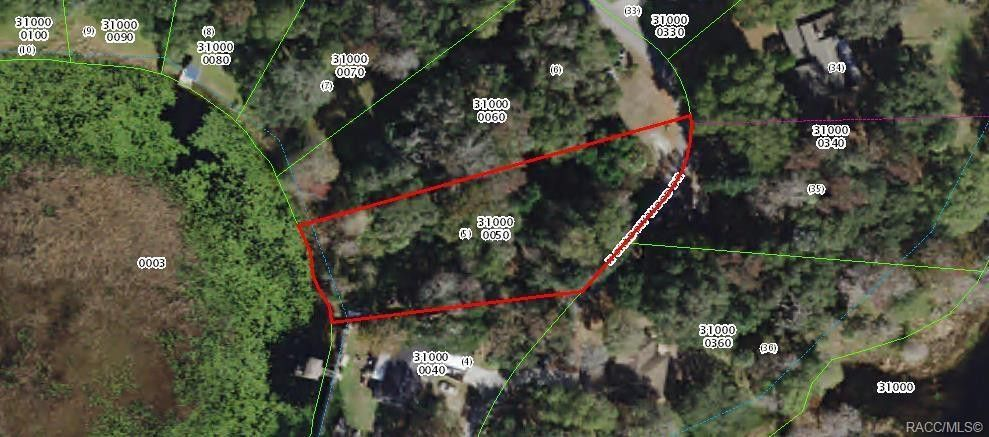 Inverness Florida Map.10 N Shadow Wood Dr Inverness Fl 34450 Land For Sale And Real
