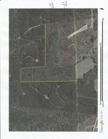 Photo of Oakey Streak Rd, Red Level, AL 36020