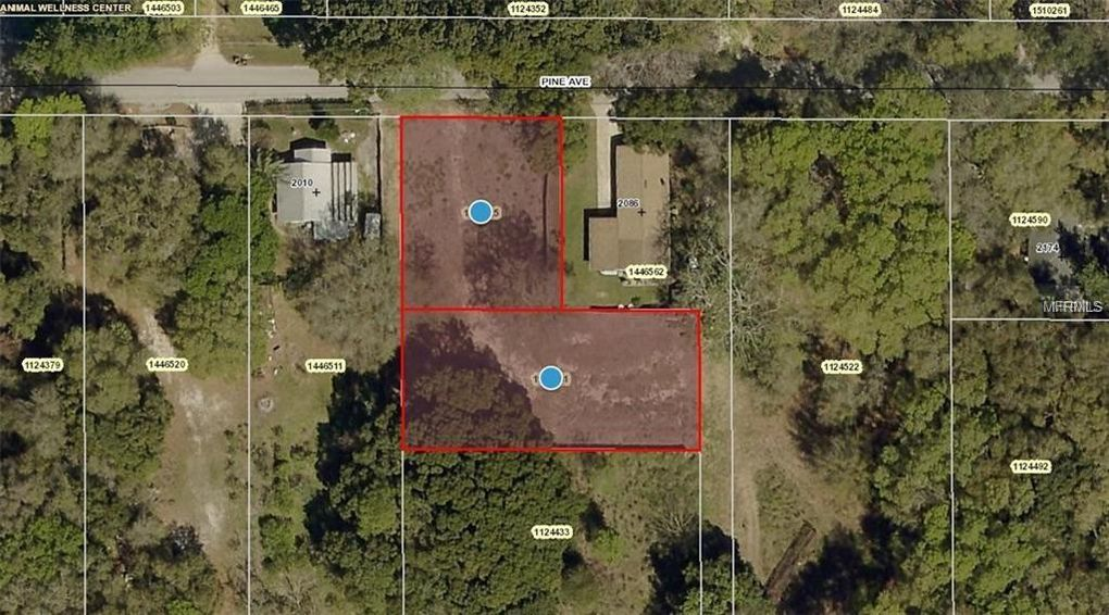 Pine Ave Mount Dora FL Land For Sale and Real Estate