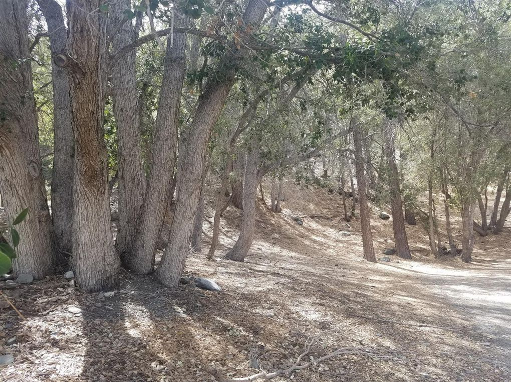 Desert View Ln Lot 19, Wrightwood, CA 92397