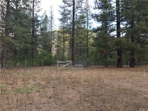 Photo of 157 Back Acres Ct, Taylorsville, CA 95983