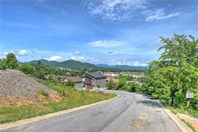 52 Climbing Aster 9 Way Lot Included, Asheville, NC 28806