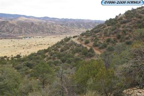 Poncho Rd Lot 17, Mimbres, NM 88043