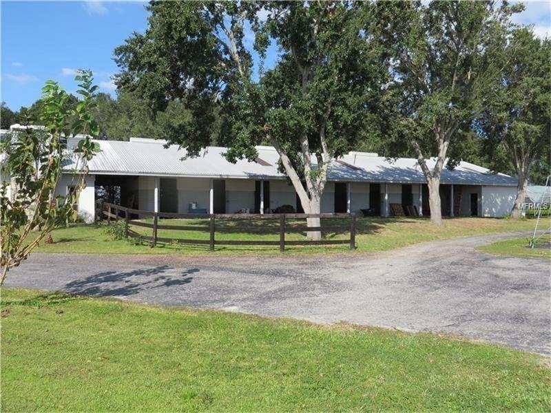11603 Innfields Dr, Odessa, FL 33556 - realtor.com®