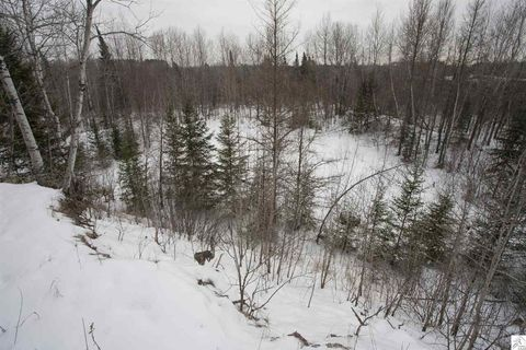 Photo of Lee Rd, Cotton, MN 55724