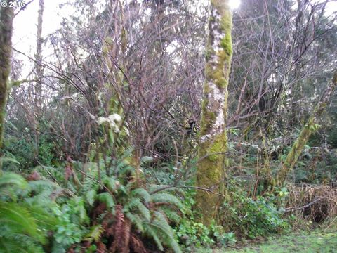 357th Ln, Oysterville, WA 98641