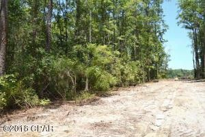 Photo of Nearing Hills Cir, Chipley, FL 32428