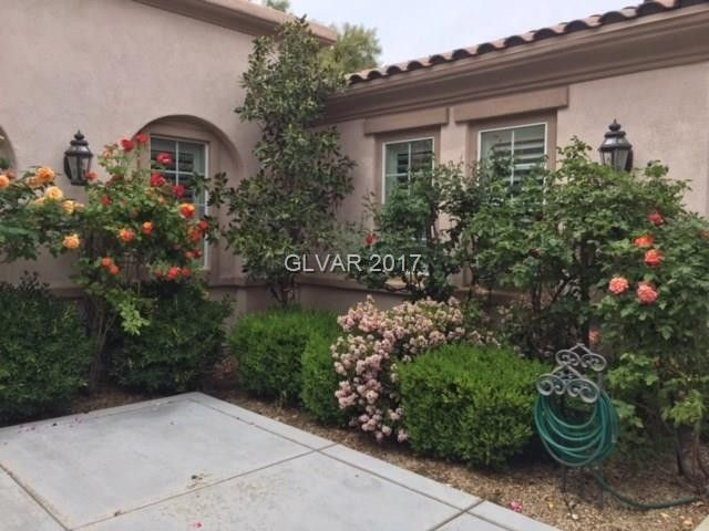 Superbe 11521 Evergreen Creek Ln, Las Vegas, NV 89135