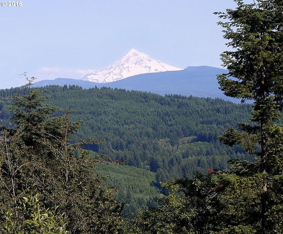 Clark County Washington Property Value