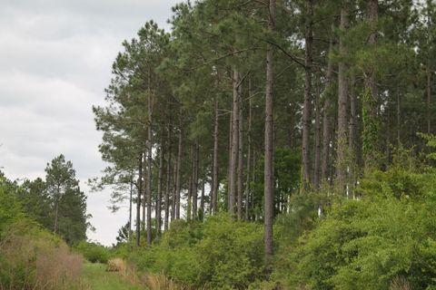 27 Ac Xxx Bear Bay Flats Rd, Paxton, FL 32538