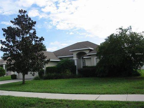 36430 Grand Island Oaks Cir, Grand Island, FL 32735
