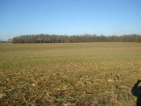 Photo of 3882 E Tank Farm Ln, Olney, IL 62450