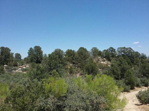 17690 W Buckhorn Dr Lot 9, Peeples Valley, AZ 86332