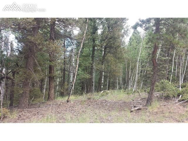 643 pinewood rd divide co 80814 land for sale and real