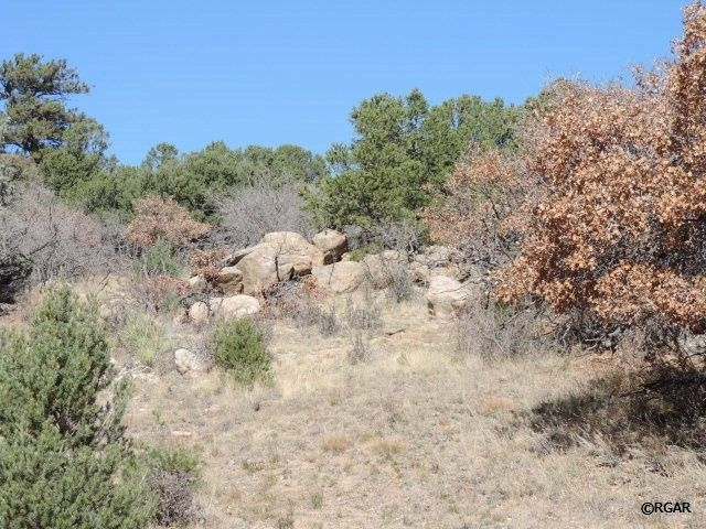 47 white cloud dr cotopaxi co 81223 land for sale and
