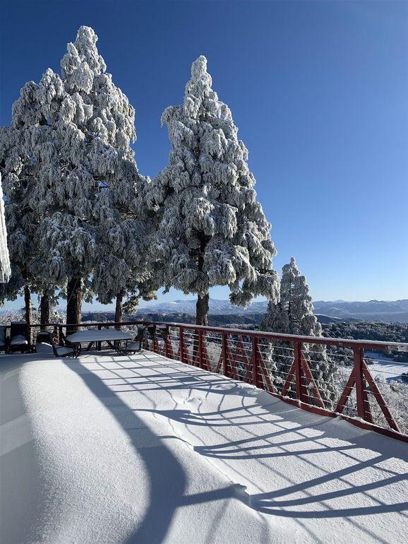 32763 Birch Hill Rd Palomar Mountain, CA 92060