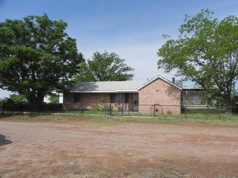 798 E Dunn Hl, Fort Sumner, NM 88119