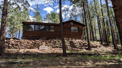 14 County Road N2057, Alpine, AZ 85920