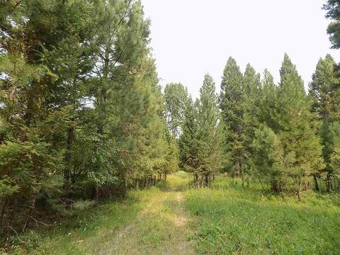 Photo of 3917 4x4 Rd, Lincoln, MT 59639