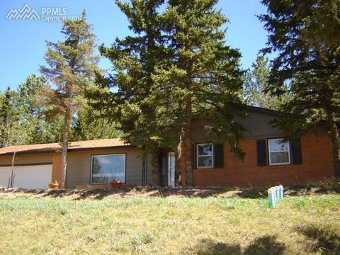 230 Piney Point Ln, Woodland Park, CO 80863