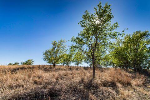 Photo of Lone Tree # 240, TX 79261
