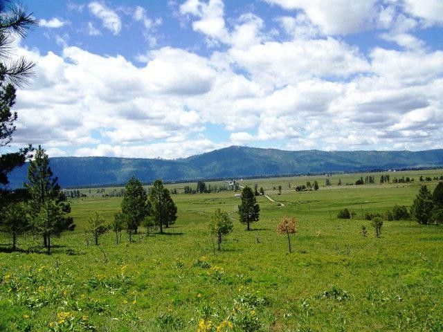 Harala Ln, Donnelly, ID 83615