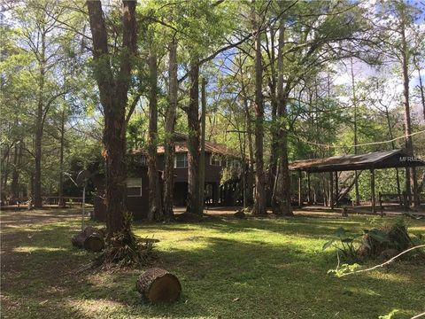 Photo of 15345 Shore Rd, Nobleton, FL 34661