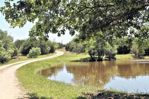 4448 County Road 2800, Kopperl, TX 76652